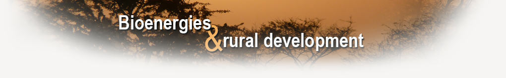 Bioenergy and rural development